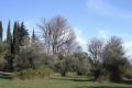 nature132